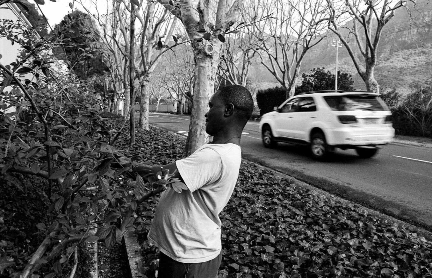 Domestic worker cutting hedges, Bishop's Court, 2009.